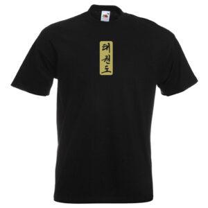 Taekwondo Symbols gold on black